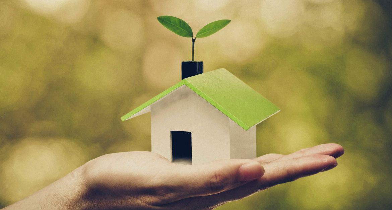 Eine nachhaltige Dach Lösung für unsere Zeit